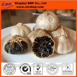 GMP & KOSHER BNP Supply Aged Black Garlic