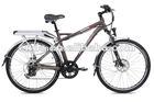 "Original Manufacturer 26"" mountain E-bike Neowave-I/TDE26M005"