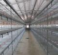 zhengzhou Furui iyi kalite tavuk tel kafes örgü satış