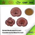 Bnp reishi suministro de extracto de la seta/extracto de ganoderma lucidum/lingzhi extracto