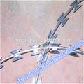 Referencia número BTO-22 galvanizado eléctrico de acero de bajo carbono alambre de púas de afeitar
