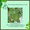 Factory supply natural flavonoids purslane herbs extract powder