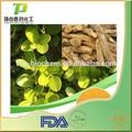 Fuente de la fábrica 100% natural puro a partir de sucedáneos rhus fisetina extracto