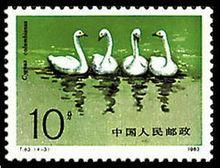 China hologram hot stamp sticker GUANGZHOU