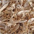 หน่อไม้แห้ง; หน่อไม้สดแห้งในฤดูใบไม้ผลิ