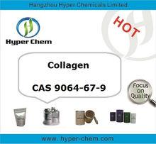 HP90566 CAS 9064-67-9 pure Collagen