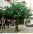 Artificielle des plantes et des arbres de jardin paysager artificiels, direct. ficus