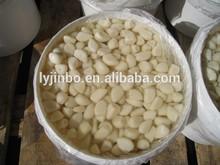 Salted garlic cloves / 2015 new crop pickled garlic cloves in brine