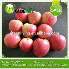 Bulk Gala Apple Import From China