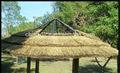 Paja palapa/de hoja de palma paja/sintético resistente al agua paja de palma