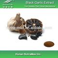 Aged preto extrato de alho, Allium Sativum extrato, Alho negro PE 4:1 ~ 20:1