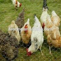 Anping Decorative chicken copper house wire mesh