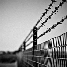For Sale PVC Top Barbed Wire Coated Chain Link Fence Fabrice