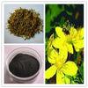 100% Natural high quality anti-pression Hypericin 0.3%/ hypericum perforatum/Hyperforin/st johns wort