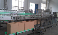 automatic packaging machine with carton