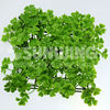 synthetic plastic artificial grape vine