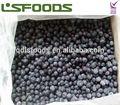 venta al por mayor de china 2014 nueva cosecha a granel iqf arándanos congelados frutas