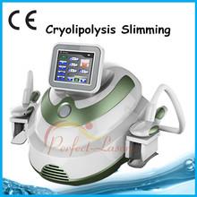Economic top sell cryolipolysis machine salon use