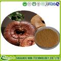 2014 heißer verkauf ganoderma lucidum, ganoderma lucidum extrakt, ganoderma extrakt