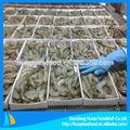 Prix frais crevettes