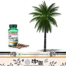 100%nature saw palmetto saw palmetto extract saw palmetto fruit extract