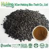 Pure natural black seeds nigella sativa
