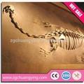 exposição de fibra de vidro escavar fósseis de dinossauro