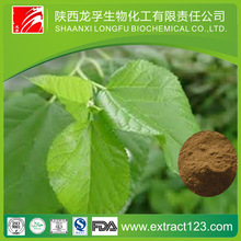 Manufacturer Supply Creams With Mulberry Extract