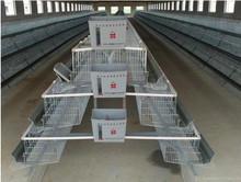 Gaiola de galinha, gaiolas em bateria galinhas poedeiras, equipamentos de avicultura