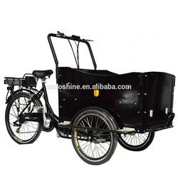 cargo tricycle china/electric three wheel cargo bike for sale/women trike