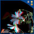 pet 3d laimagen deimpresión de la flor