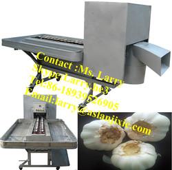 garlic root remover/garlic root cutter/garlic root cutting machine
