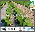 DAYU Irrigation - PE dripline/Agriculture water irrigation machine/equipment/material
