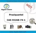 Hp90608 cas 55268-74-1 Praziquantel pulver