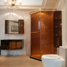Charming decorate 2013 hidden shower room