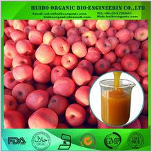 organic apple juice concentrate / best apple juice concentrate price