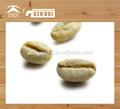 arabica 녹색 커피 콩 경쟁력있는 가격과