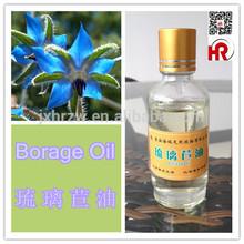 Hot sale Borage Oil in bulk