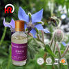 Liquid Borage Oil for competitive price