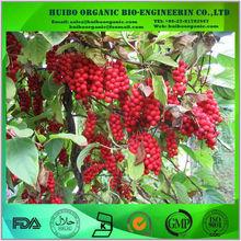 Organic schisandra fruit extract / schisandra / schisandra berry