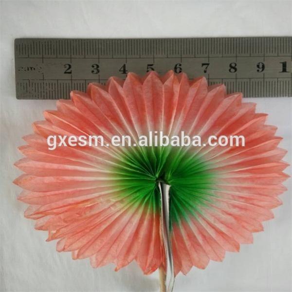 جيد-- تصميم ملون عصا زخرفية نباتية
