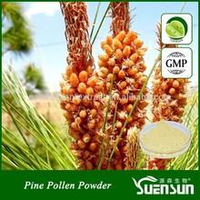 cell wall broken pine pollen powder hot sell organic pine pollen powder