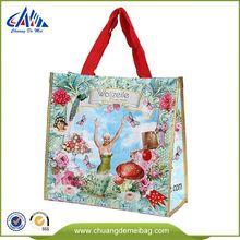 Environmental Environmental Pp Non Woven Shopping Bag