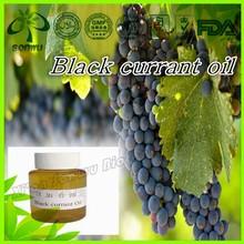 Natural black currant seed oil/black currant oil
