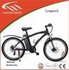 Lianmei brand electric bike LMTDF-02L