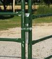 Ovejas / ganado / buffalo / toro / becerro bovini / vaca / corral panel / stand paddock stand / granja puertas