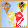 Promotion kite/Cheap Diamond Kites
