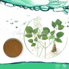natural epimedium extract powder Epimedium Herb sexual healthcare Extract