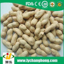 2014 new crop peanuts in shell with good price