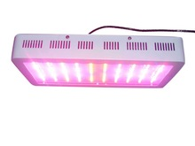 300W High Power 11 Band LED Grow Light